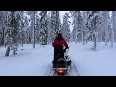 Snowmobile Ride With A Reindeer Herder In Pello In Lapland - Puolukkaan Pirtit Reindeer Farm