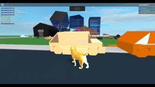 Roblox-Doge Simulator being mlg ;) pt.1