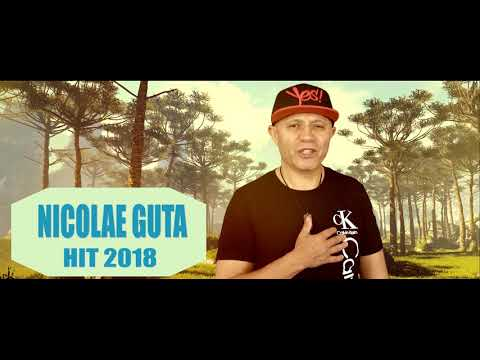 Nicolae Guta - Din Constanta-n Timisoara HIT 2018