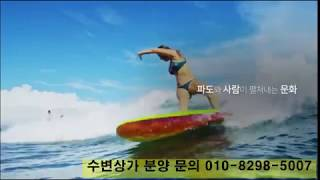 시흥 MTV 거북섬 웨이브파크 해변상가