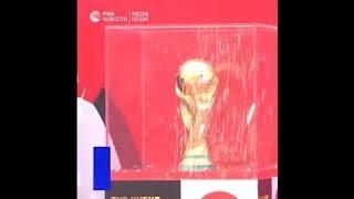 Талисман ЧМ-2018 по футболу волк Забивака
