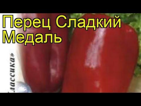 Перец сладкий Медаль. Краткий обзор, описание характеристик, где купить семена cápsicum ánnuum