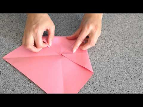 How to Make a Cootie Catcher!