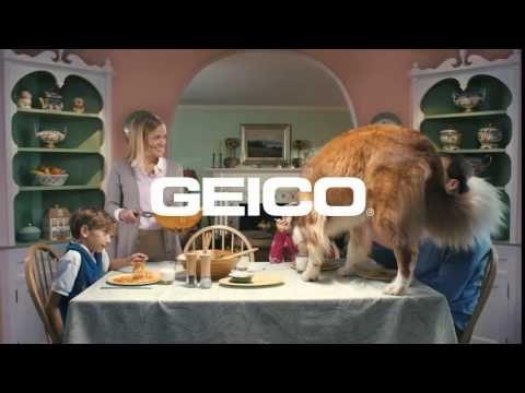 Geico Ad With A Hungry Dog