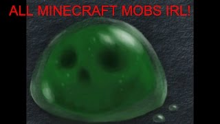 All Minecraft Mobs in Real Life!