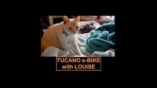 Tucson MONSTER e-Bike with Louise and Prof Simon, a bit of fun. thumbnail