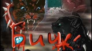 Арт Коты воители  Бич
