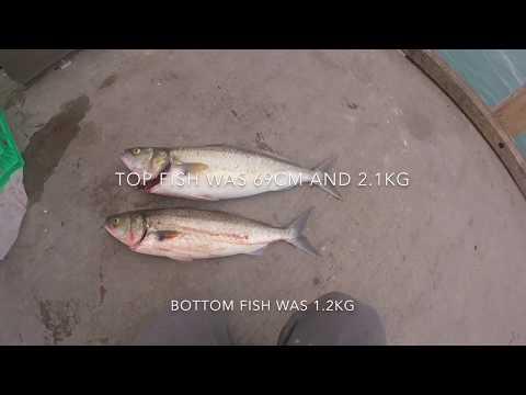 Salmon Fishing Victoria (Caught My PB)