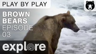 Brown Bear Play By Play - Ranger Mike Fitz  - Katmai National Park - Episode 03 thumbnail