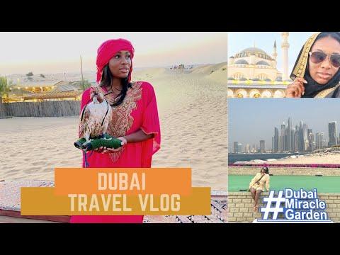 DUBAI VLOG 2020   Desert Safari, Burj Khalifa + more!