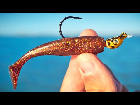 Tampa Bay Winter Fishing For Speckled Trout And Redfish