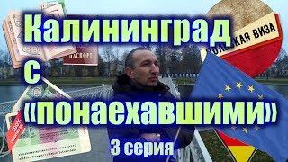 Калининград с «понаехавшими» (3 серия)