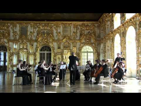P.Tchaikovsky. Serenade for Strings.