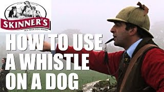 Gundog Training Tips - How To Use The Whistle