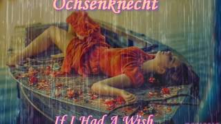 Ochsenknecht ♠  If I Had A Wish ♠ HQ