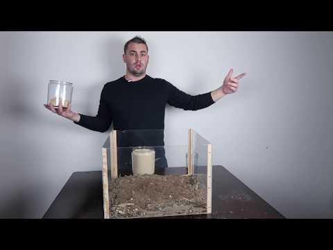How To: Natural Farming No Smell Piggery