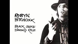 Watch Robyn Hitchcock It Was The Night video
