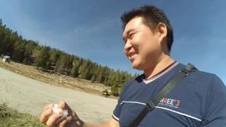 Vlog #4. Путешествие по США. Сиэтл - Нью Йорк. Третий день путешествия. Йелоустонский парк.(Vlog #4. Путешествие по США. Сиэтл - Нью Йорк. Третий день путешествия. Йелоустонский парк. Бизоны, Олени, краси..., 2016-10-10T12:24:22.000Z)