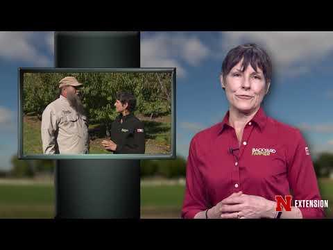 Backyard Farmer Presents Lifestyle Gardening 603