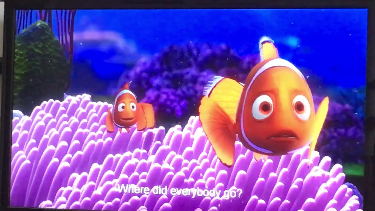 Finding Nemo - Barracuda Attacks - YouTube