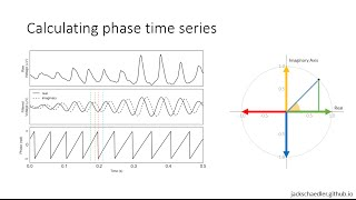 Calculating phase and coherence in neural signals
