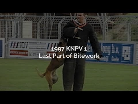 1997 KNPV1 Last Part of Bitework