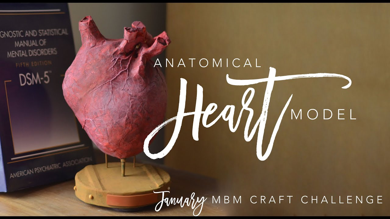 Mbm January Craft Challenge Paper Mach Anatomical Heart Model