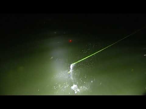 Outdoor Tip: Night Bowfishing