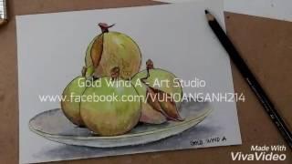 Cách tô quả vú sữa với sáp dầu ( star apple by oil pastel )