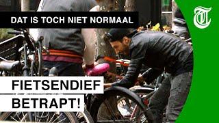 Bejaarde man pakt fietsendief aan - DAT IS TOCH NIET NORMAAL? #06