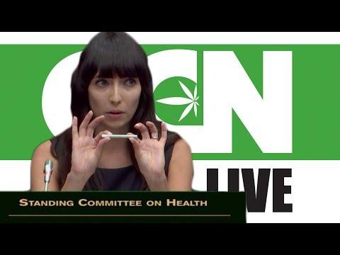 Cannabis Culture News LIVE: Marijuana Activists Testify to Gov't on Canada's Legalization Bill