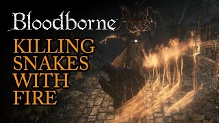 Hunting Snakes With Fire - Bloodborne Gameplay