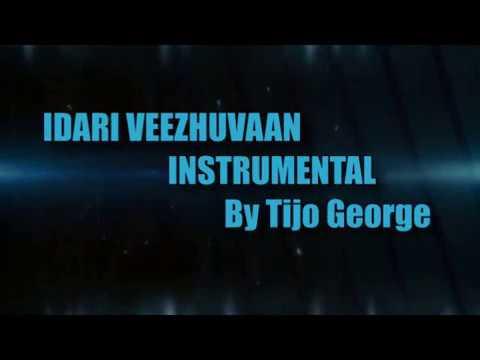 Edari Veezhuvan Instrumental By Tijo George