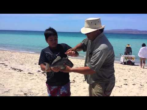 fishing with carlos eduardo jimenez 2