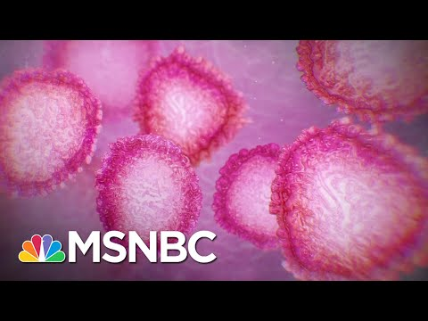 How To Protect Yourself As The Covid Pandemic Gets Worse | The 11th Hour | MSNBC