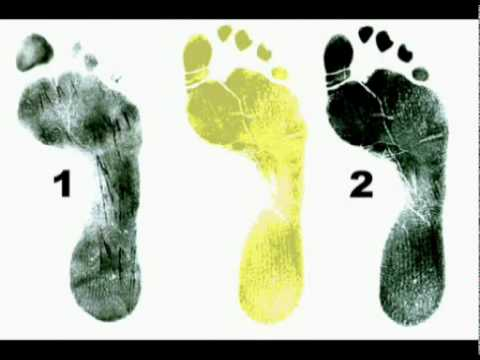 Amanda knox evidence Bloody footprint analysis Kercher murder  Sollecito vs Guede
