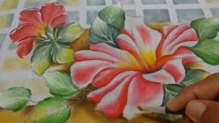 Roberto Ferreira- Pintura Hibiscos Aberto e acabamentos