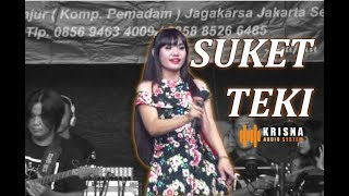 SUKET TEKI Cover By KRISNA MUSIC Ft. FITRI