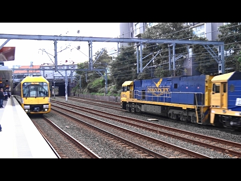 Newtown Train Station Spotting Compilation - Indian Pacific I Transport Sydney Trains