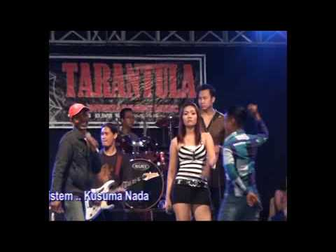 LOPER SUSU-nila feat ora reti-Tarantula entertainment music