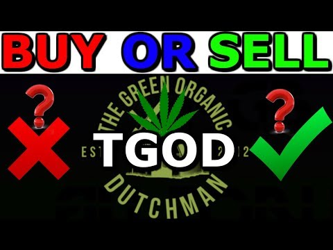 TGOD - The Green Organic Dutchmen - Buy Or Sell - About TGOD Stock Analysis - TGOD VP Interview