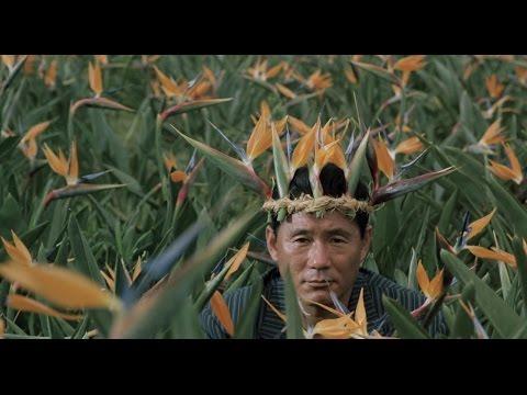 Okinawa Days: Kitano's Second Debut
