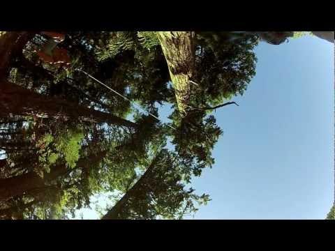 Loggers Lake Rope Swing