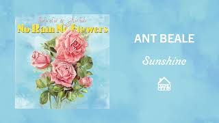 Ant Beale - Sunshine (Official Audio)