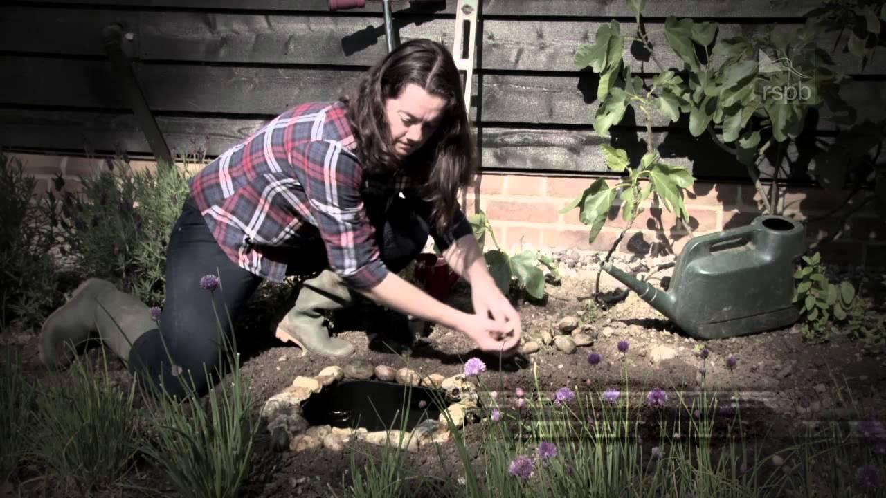 Make A Wildlife Pond Help Give Nature A Home Youtube