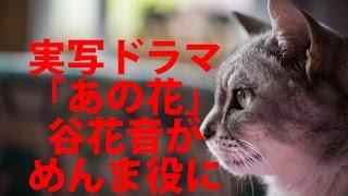 実写ドラマ「あの花」、谷花音がめんま役に!子役キャスト発表 cinemaca...