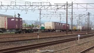 JR貨物 国鉄色EF65 2139号機撮影の巻(H29.4.29)