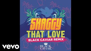 Shaggy That Love Black Caviar Remix Audio