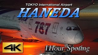 【4K】1Hour! Night view Spotting @HANEDA Airport International terminal