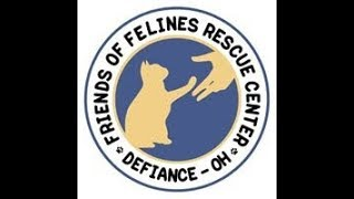 FOFRescueCenter_Live_Stream_©